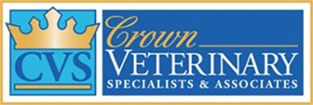Veterinarian in Lebanon, NJ | Crown Veterinary Specialists
